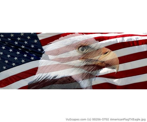 american flag eagle graphic - photo #8